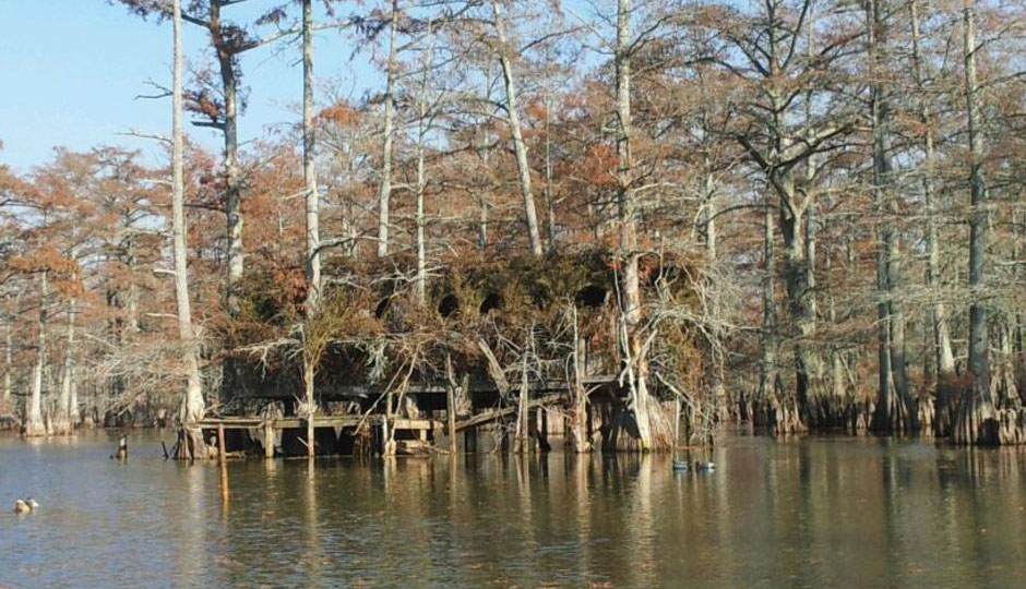 Beaver Dam Hunting Services | Mississippi Duck Hunting Lodge
